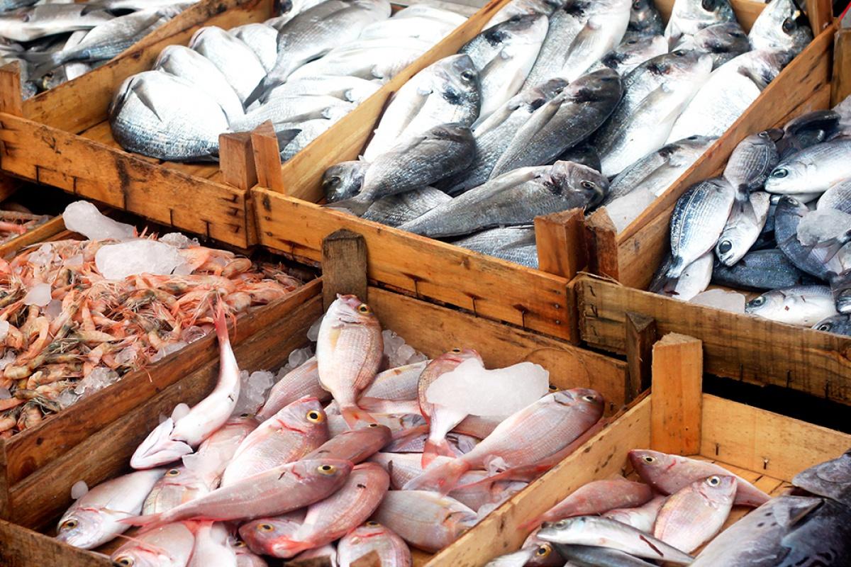 Tiendas en Barcelona con servicio de comida pescado a domicilio